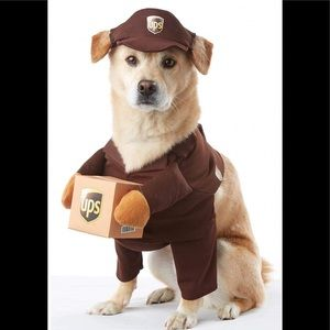 Pet UPS Driver Halloween Costume - Size Large